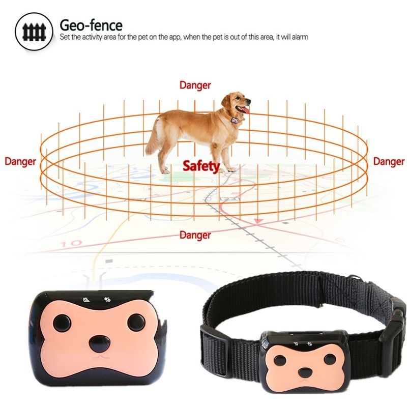 intelligent-pet-gps-tracker3.jpg